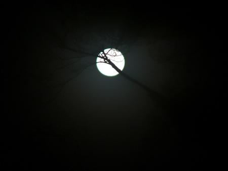 Full moon on a foggy morning